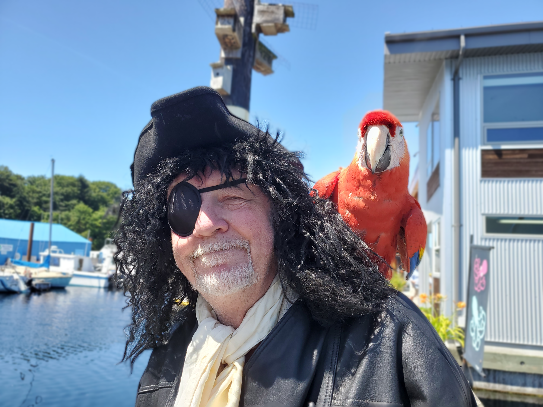 Cap'n Red Feather